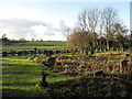 TL6153 : Cemetery of St Mary's Church by Hugh Venables