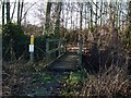 TL0140 : Footbridge by Barry Ephgrave