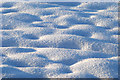 SJ3201 : Snow mounds : Week 1