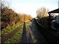 TL5774 : Blackberry Lane by Hugh Venables