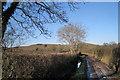 SX8475 : Lane to Brocks Farm (2) by Robin Stott