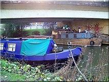ST8259 : Hiding under the bridge, Bradford-on-Avon by Maigheach-gheal