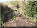 ST6064 : Byway near Belluton by Maigheach-gheal