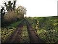 TL6476 : Track along Isleham Wash by Hugh Venables