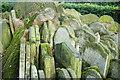 TQ2983 : Gravestones by the Hardy Tree, St.Pancras, London (2) : Week 3