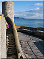 SY3492 : Museum Steps ~ Lyme Regis : Week 4