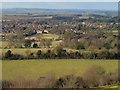 SU6993 : Icknield Way and Watlington from Watlington Hill by David Hawgood