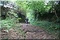 SJ5763 : Lightfoot Lane, Eaton by Dave Dunford