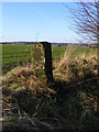 SE3806 : Stone Gate Post by R BEEBY