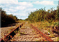 NS5167 : overgrown rail tracks, Braehead, 1977 by David Douglas
