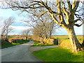 SM8527 : Sun-lit lane north of Lochmeyler by Jonathan Billinger