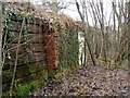 NS4672 : Remains of Old Kilpatrick railway station by Lairich Rig