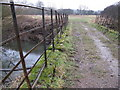 TQ1331 : Footpath and bridleway merge at River Arun crossing by Dave Spicer