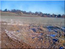 SO2855 : Fields west of Kington by Trevor Rickard