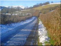 SO2554 : Lane to Gladestry by Trevor Rickard