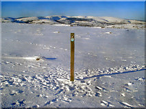 SO2556 : Way marker post on the Hergest Ridge by Trevor Rickard