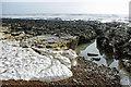 TQ3701 : Eroded chalk, Saltdean beach by Robin Webster