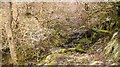 NM9549 : Burn, Glen Stockdale by Richard Webb