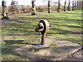 TQ4484 : Water font in Barking Park by Adrian Cable