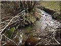 SX3180 : Stream near Brockle Ford by Derek Harper