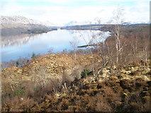 NN0822 : Bay at Drochaid nan Druidh Loch Awe by John Ferguson