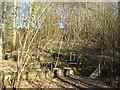 TQ8932 : Old bridge, New Bridge, Tilden Gill by David Anstiss