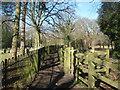 TQ8927 : Footpath junction near Wittersham Cemetery by David Anstiss