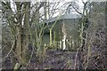 SU6472 : Loophole behind the tree by Bill Nicholls