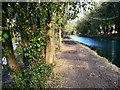 SU3967 : The River Kennet  and the Kennet and Avon canal, east of Kintbury by Brian Robert Marshall