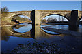 SD5869 : Loyn Bridge : Week 10
