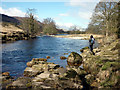 SE0459 : The River Wharfe at Appletreewick : Week 11
