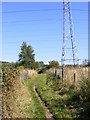 SJ9403 : Path under the Pylons by Gordon Griffiths