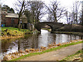 SD9114 : Rochdale Canal by David Dixon