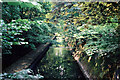 SP0683 : View from the bridge on the River Rea, Cannon Hill Park, Birmingham by Brian Robert Marshall