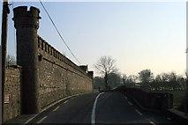 M7548 : Ballinamore Bridge, County Galway by Sarah777