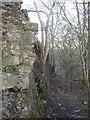 NS5751 : The Orry Mill by Kenneth Mallard