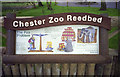 SJ4170 : Interpretation sign for Chester Zoo Reedbed (1) by John Rostron