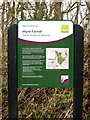 SO7776 : Natural England information board in Wyre Forest by P L Chadwick
