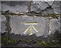 J3271 : Bench Mark, Belfast by Rossographer
