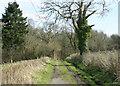 ST6563 : 2010 : Tuckingmill Lane by Maurice Pullin
