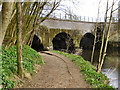 SD7912 : The Aqueduct at Burrs by David Dixon