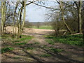 SU9316 : View north through woodland opening at the bottom of Woolavington Down by Dave Spicer