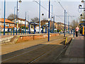 SJ8098 : Langworthy Tram Station by David Dixon