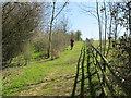 SU7998 : Chiltern Way by Bledlow Ridge by David Hawgood