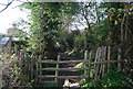 TQ6841 : Stile entering Brenchley, High Weald Landscape Trail by N Chadwick