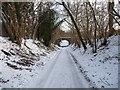 SU2942 : Amport - Georgia Lane by Chris Talbot