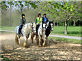 TQ2679 : Horseriding in Hyde Park, London by Christine Matthews