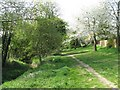 SP8280 : Path by the Slade Brook in Rothwell by M J Richardson
