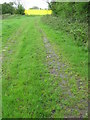 ST7759 : Footpath to Pipehouse by Dr Duncan Pepper