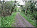 TL6357 : Bridleway to Dullingham by Hugh Venables